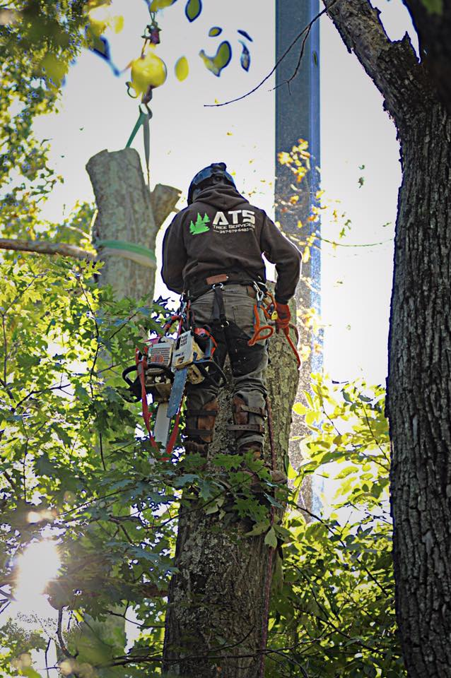 Adam geared up in tree